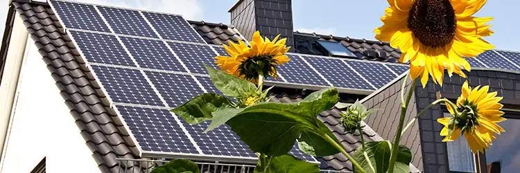 zonnepanelen plaatsen Malden